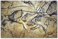 Изображения львов на стене пещеры Шове (Франция)