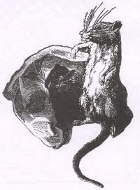 Городская и полевая Крысы (Е. Ламберт)