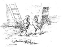 Куропатка и Петухи (де Вимар)