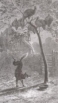 Лиса и Индюшки (Е. Ламберт)