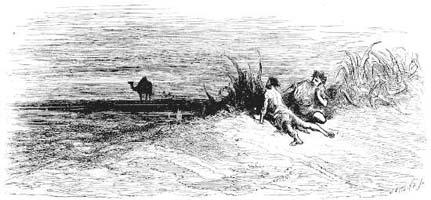 Верблюд и плывущие Поленья (Г. Доре)