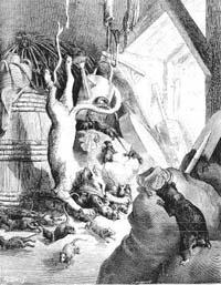 Кот и старая Крыса (Г. Доре)