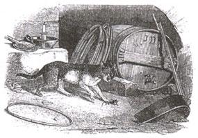 Старый Кот и Мышонок (Ж. Давид)