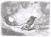Две Крысы, Яйцо и Лиса (Адамард)