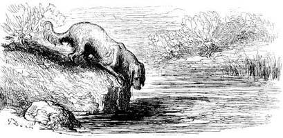 Собака и ее тень (Г. Доре)