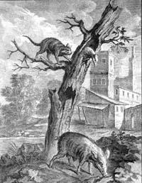 Орел, Дикая Свинья и Кошка (Удри)