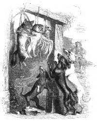 Английская Лисица (Гранвиль)