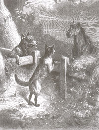 Лисица, Волк и Лошадь (Е. Ламберт)