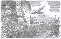Два Голубя (К. Жирарде)