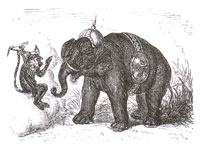 Слон и Обезьяна Юпитера (Адамард)