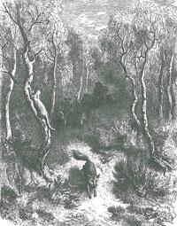 Лисица и Кот (Г. Доре)