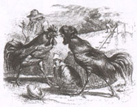 Куропатка и Петухи (Гранвиль)