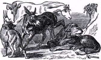 Лев состарившийся (К. Жирарде)