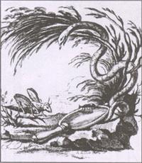 Стрекоза и Муравей (Монне)