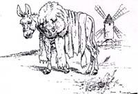 Осел в львиной шкуре (Вимар)