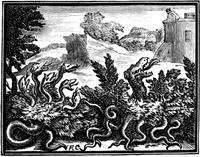 Стоглавый и стохвостый Драконы (гравюра XVII в.)