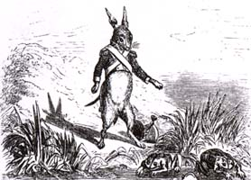 Заяц и Лягушки (Адамард)