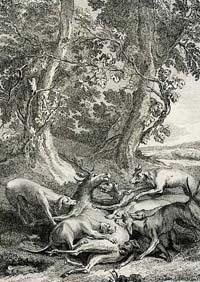 Виноградник и Олень (Удри)