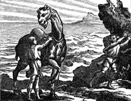 Верблюд и плывущие Поленья (Ф. Шово)