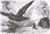 Орлица и Жук (Адамард)