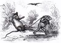 Лягушка и Крыса (Адамард)