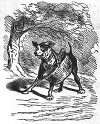 Собака с хозяйским обедом (Cham)