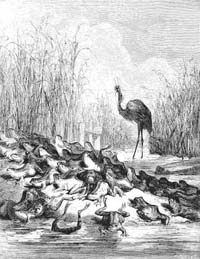 Лягушки, просящие Царя (Г. Доре)