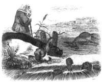 Собаки и ослиная Туша (Гранвиль)