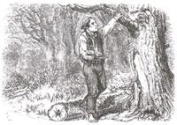 Лес и Дровосек (Адамард)