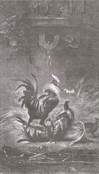 Куропатка и Петухи (Е. Ламберт)