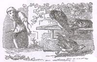 Сокол и Каплун (К. Жирарде)
