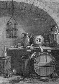 Мышь, удалившаяся от света (Удри)