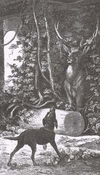 Виноградник и Олень (Е. Ламберт)