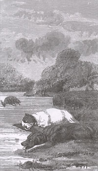 Собаки и ослиная Туша (Е. Ламберт)