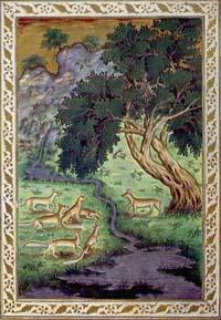 Бесхвостая Лисица. Индийская миниатюра.