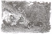 Кролики (К. Жирарде)