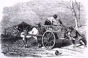Лошадь и Осел (Ж. Давид)