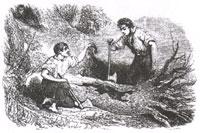 Мыши и Сова (Ж. Давид)