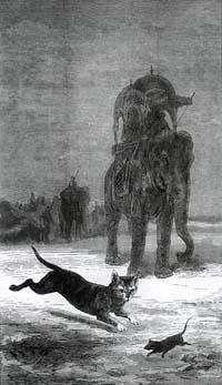 Крыса и Слон (Е. Ламберт)